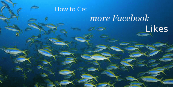 image of fish swimming from Martin Reynolds Social Media Consultant`s Blog post