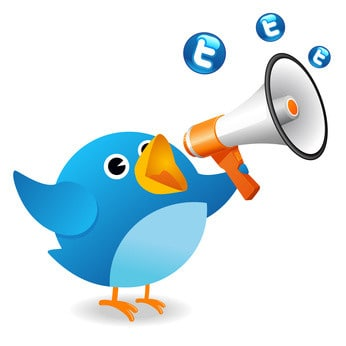 image of the Twitter bird