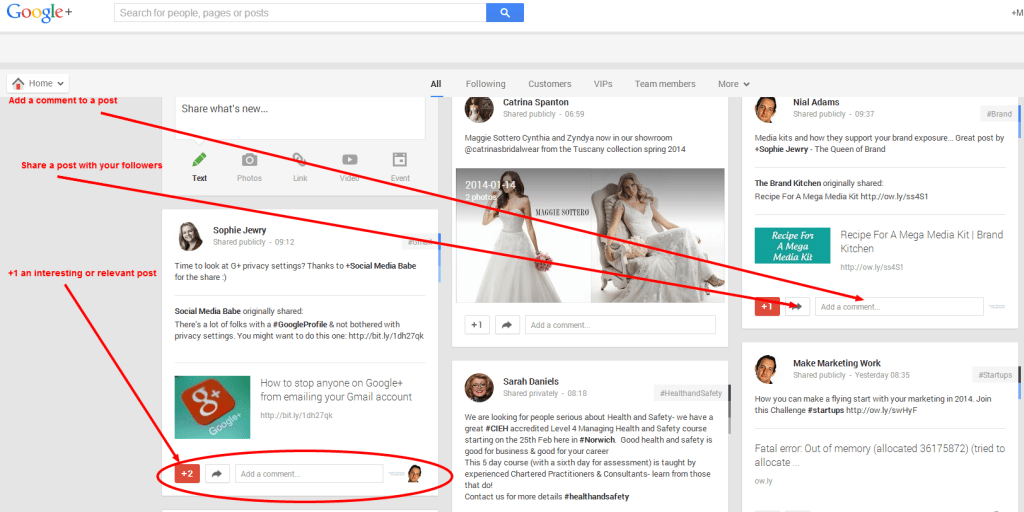 image of a Google Plus news feed