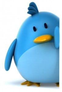 image of the blue Twitter bird