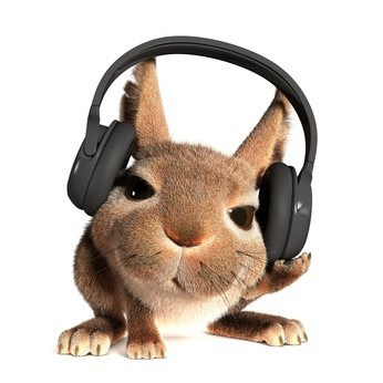 image of a rabbit with headphones on